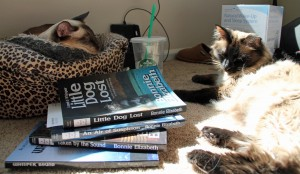 Two siamese cats with four books