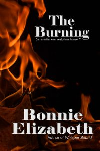Book cover for The Burning short story, flames on black background