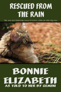 Book cover Rescued from the rain, brown tabby cat on green background